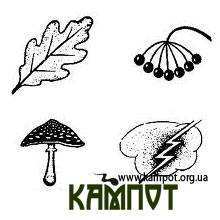 Українські символи