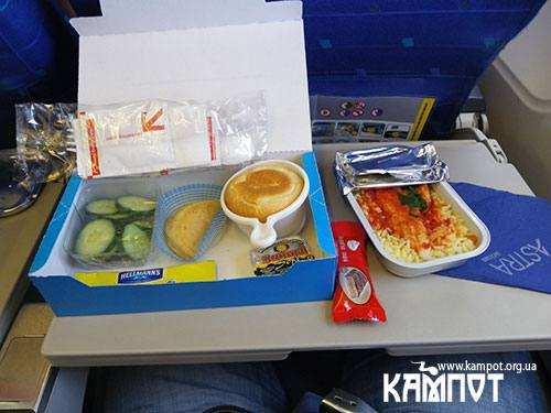 Їда в літаку
