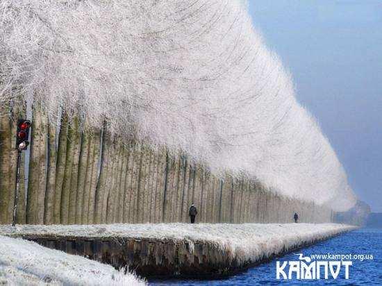 Зимовий пейзаж в Грабовіце