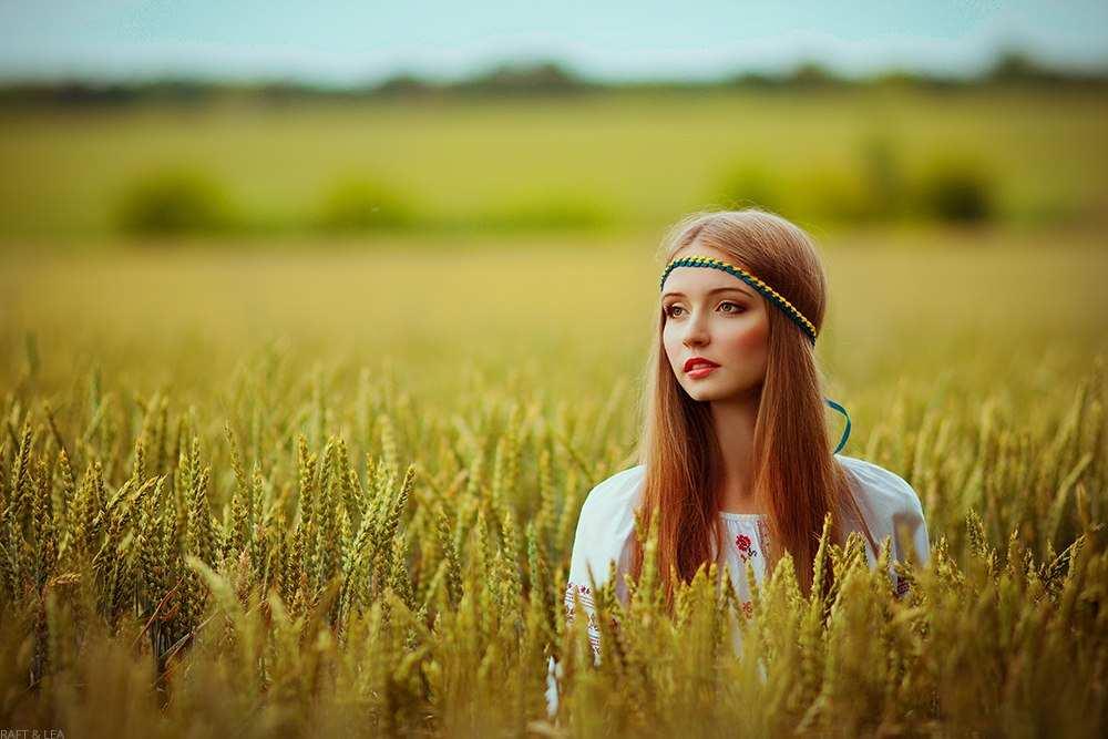 Дівчина в пшеничному полі
