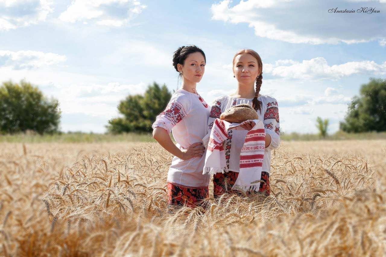 Дівчата в пшеничному полі