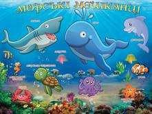 Плакат Морські мешканці